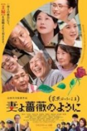 Nonton What a Wonderful Family! 3: My Wife, My Life Sub Indo